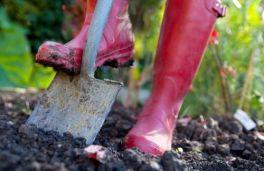 shovel-garden-wellies-lg_A1